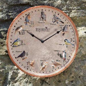 Smart Garden 'Birdberry' Indoor/Outdoor Wall Clock 12''