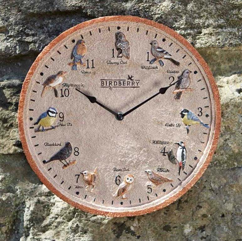Smart Garden 'Birdberry' Indoor/Outdoor Wall Clock 12''