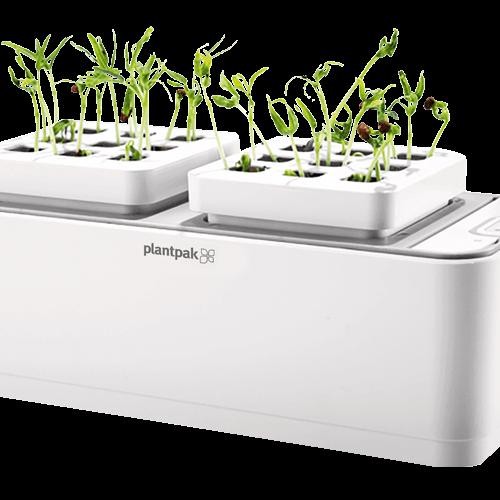 Plantpak Hydro-Pod Auto Watering Propagator