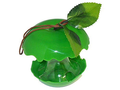 Fruity Bird Seed Feeder - Green Apple