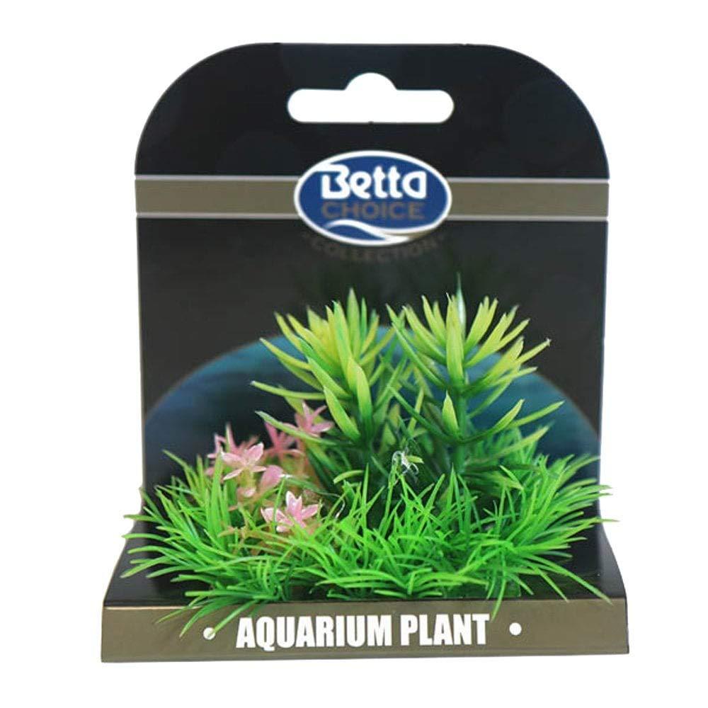 Betta Choice Mini Plant Mat - Green & Pink