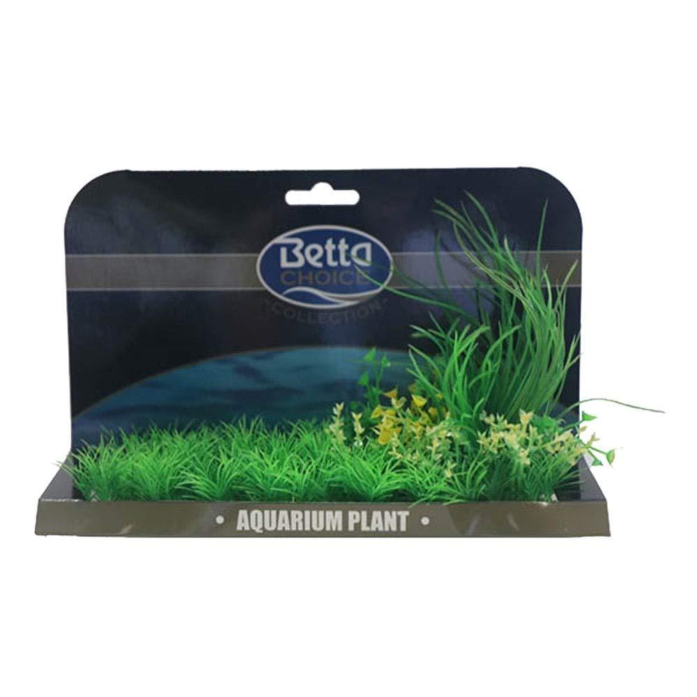 Betta Choice XL Plant Mat - Green Lilaeopsis