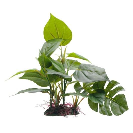 Fluval Anubias Plant 20cm With Base