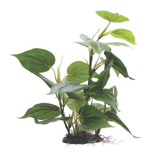 Fluval Anubias Plant 30cm With Base