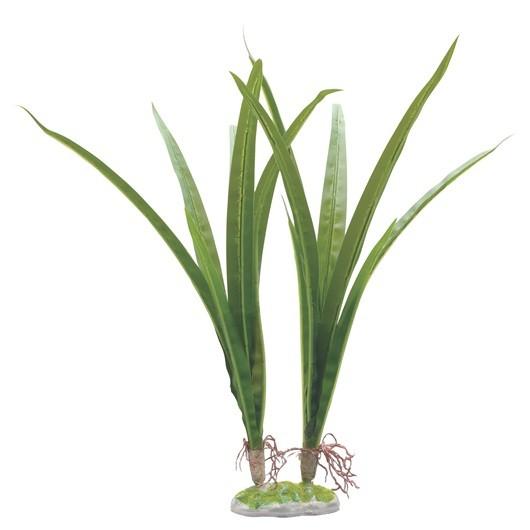 Fluval Acorus Plant 36cm With Base