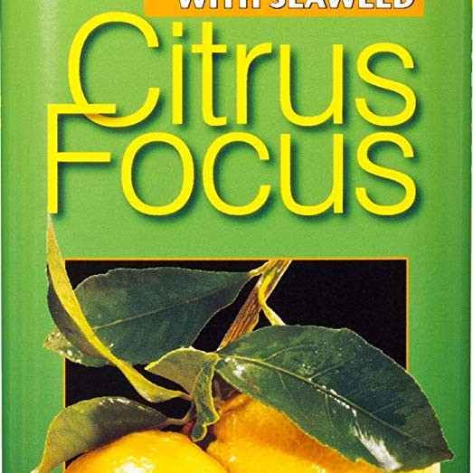 Growth Technology Citrus Focus 300 ml