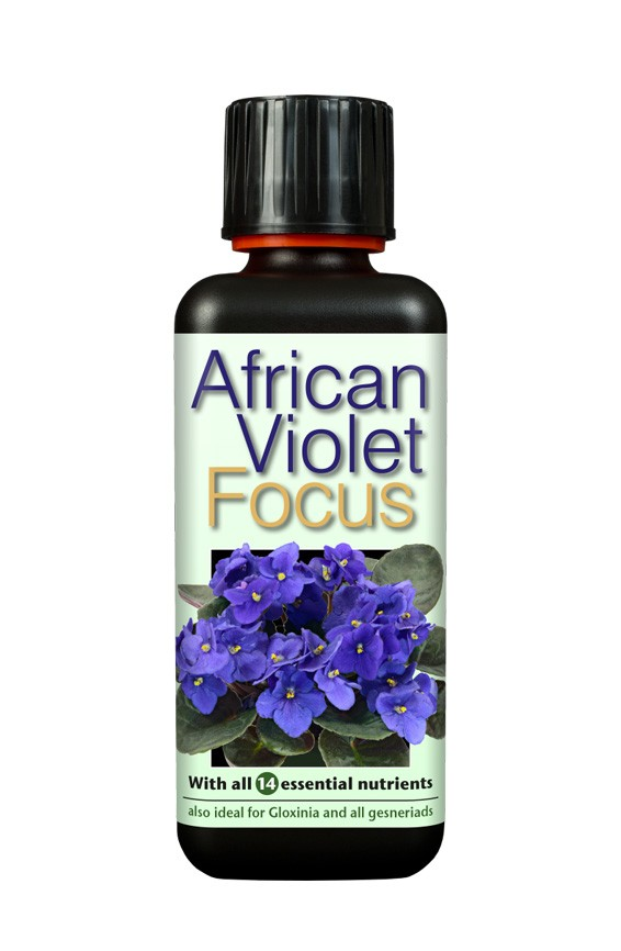 Growth Technology African Violet Focus - 100ml