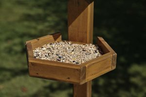 Tom Chambers Bird Table Seed Tray