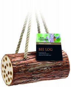 Tom Chambers Bee log
