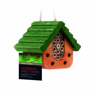 Tom Chambers Ladybird and Insect House