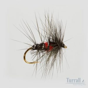 Turrall Bibio Wet Hackled 12