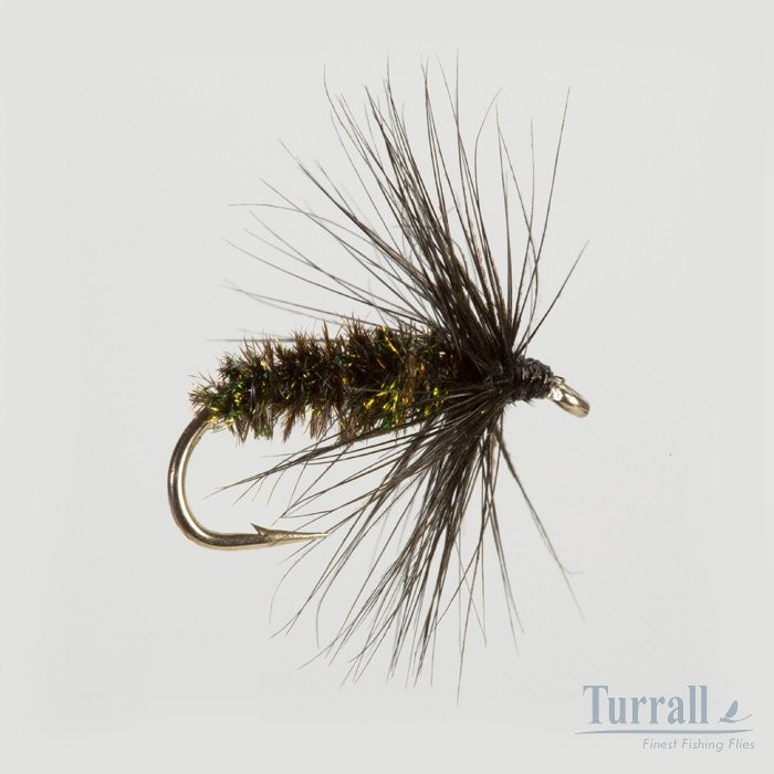 Turrall Black & Peacock Spider Wet Hackled 12