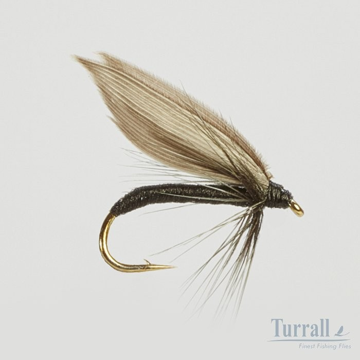 Turrall Black Gnat Wet Winged 12