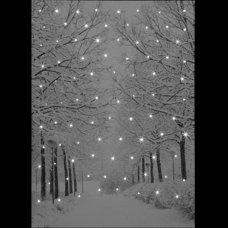 SnowTime 50x70cm 'Tree-Lined Avenue' Snow Scene Canvas