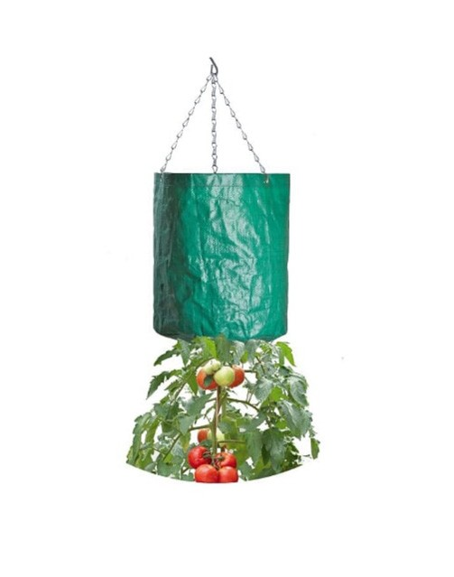 Garland Hanging Tomato Growing Bag (W0514)
