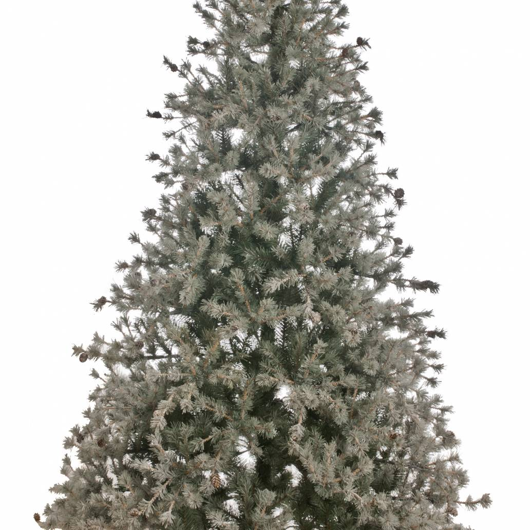 Festive 1.8m Flocked Braemar Christmas Tree With Small Cones Whse (33)