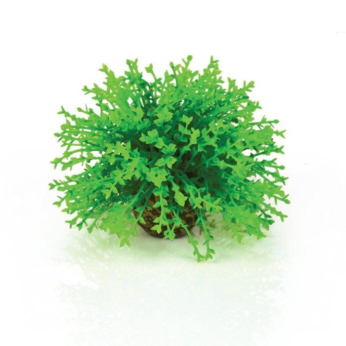 Oase BiOrb Flower Ball - Green (46087)