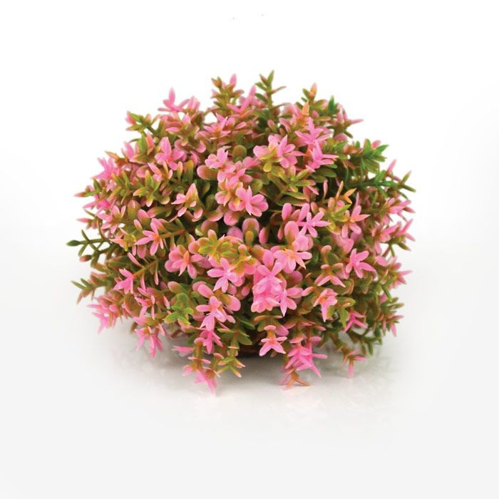 Oase BiOrb Flower Ball Pink (46088)