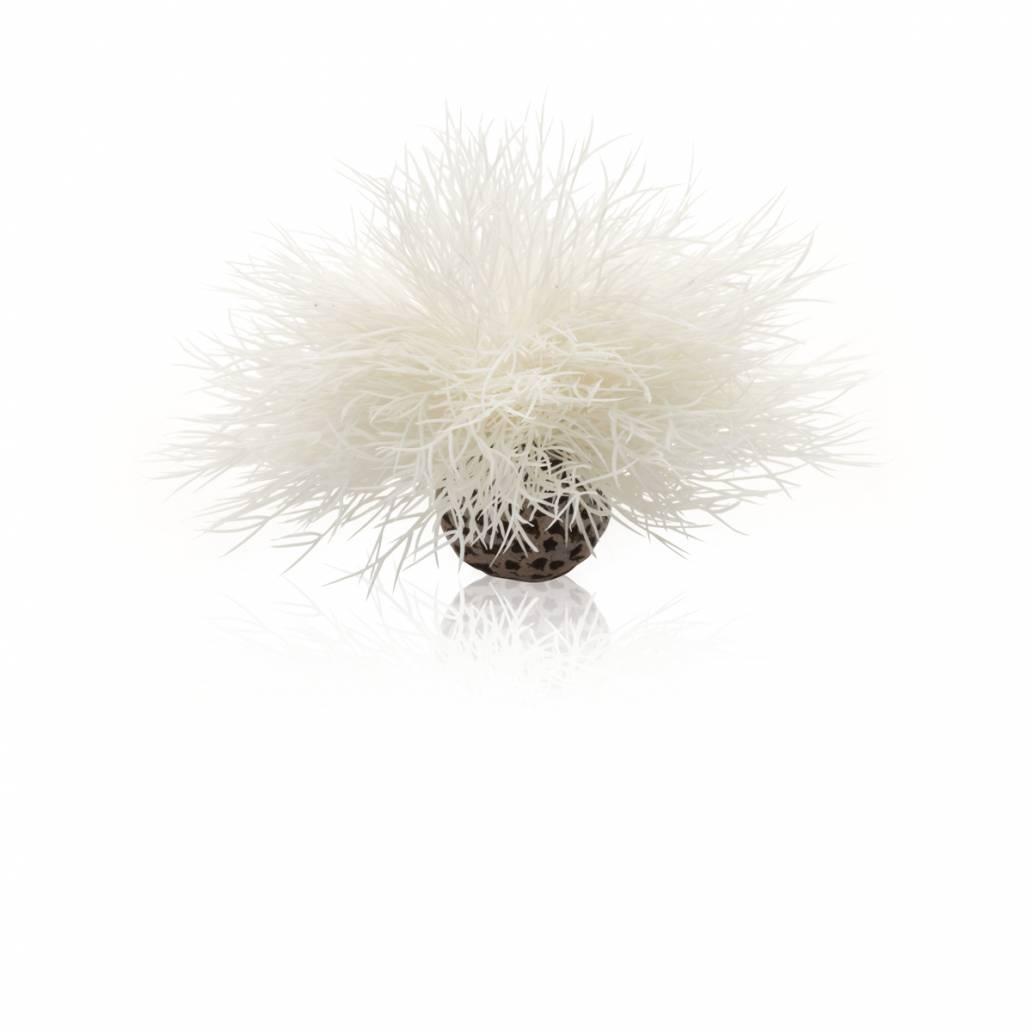 Oase BiOrb Aquatic sea lily white (PL22)