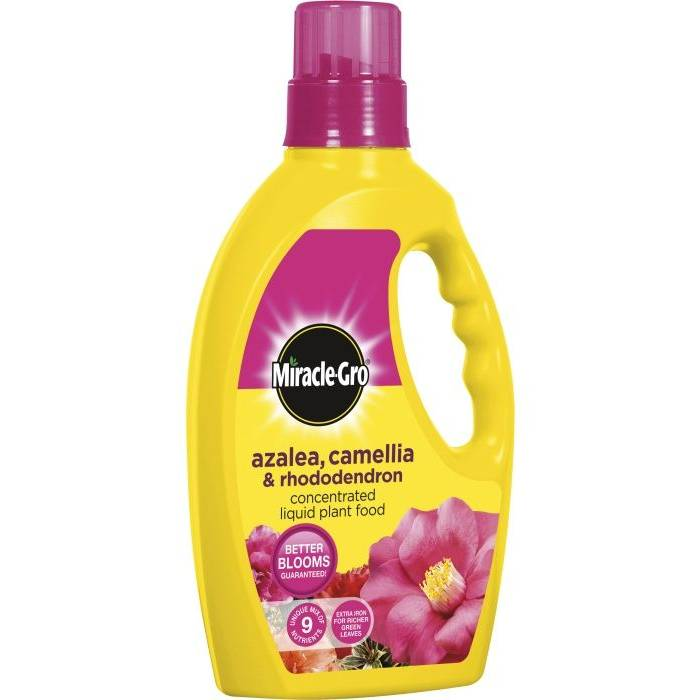 Miracle Gro Ericaceous Plant Food Liquid - 1L