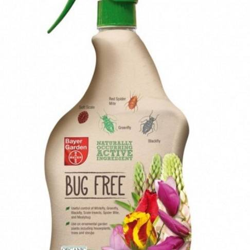 Bayer - Bug Free - 1ltr