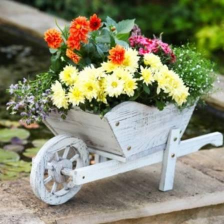 Smart Garden Woodland Whitewashed Wheelbarrow Planter