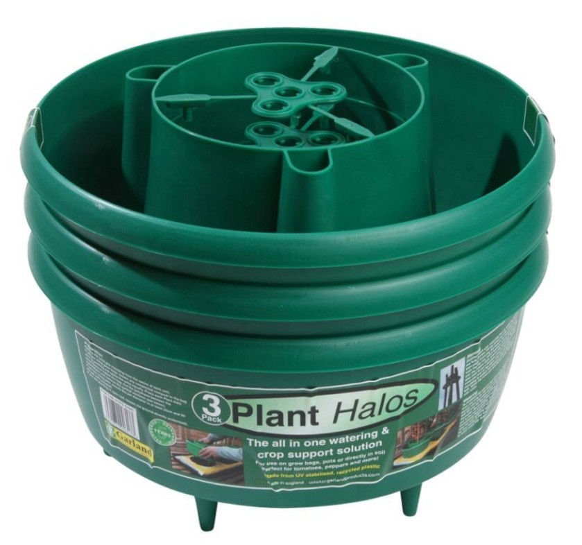 Garland Plant Halos (Set of 3) - Green