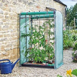 Smart Garden Tomato Gro-Zone Max Growhouse