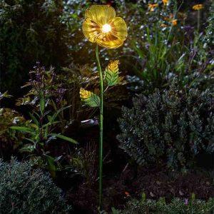 Smart Garden Yellow Pansy