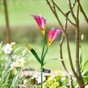 Smart Garden Lily