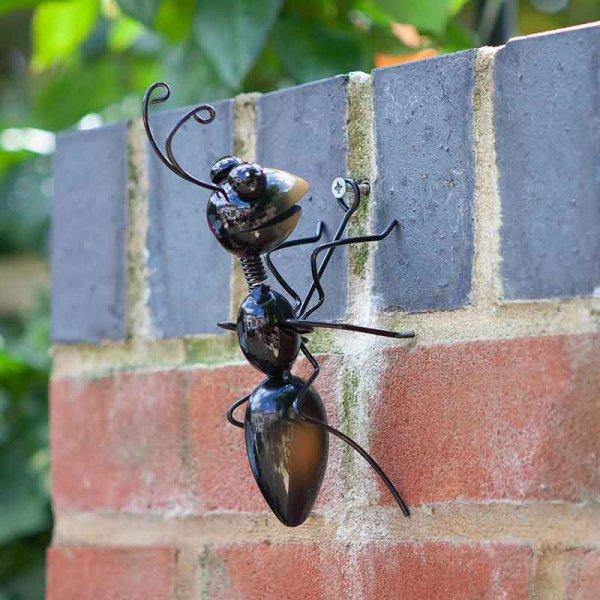 Smart Garden Ants Medium