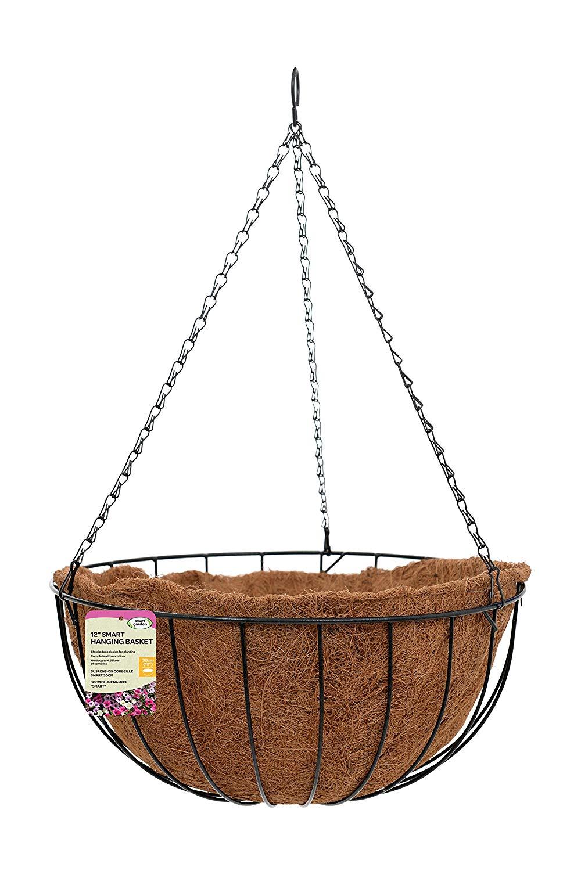 """Smart Garden 12"""" Smart Hanging Basket"""