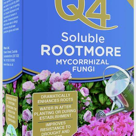 Q4 Soluble Rootmore 5 x 10g Sachets