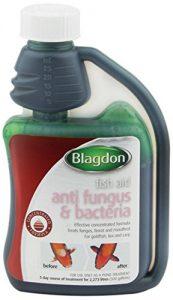 Blagdon Treat Anti Fungus & Bacteria 250ml