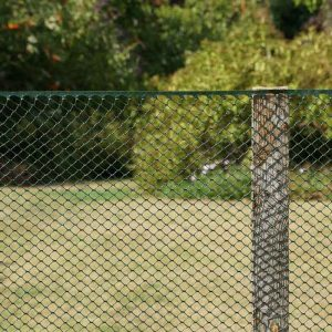 Smart Garden Multi-Mesh - Green 15mm - 1m x 5m