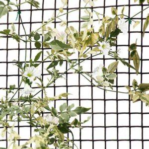 Smart Garden Climbing Plant & Fencing Mesh - Brown 20mm - 0.5m x 5m