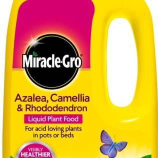 Miracle-Gro Azalea, Camillia and Rhododendron Liquid Feed 1L