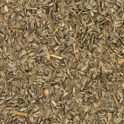 Johnston & Jeff Medium Striped Sunflower Seed 10kg