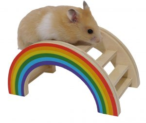 Nibble Stix & Woodies Rainbow Play Bridge
