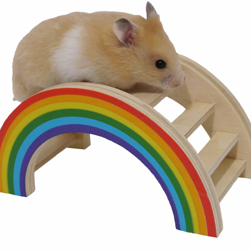 Nibble Stix & Woodies Rainbow Play Bridge