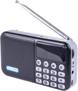 Powapacs D.A.B Digital Radio