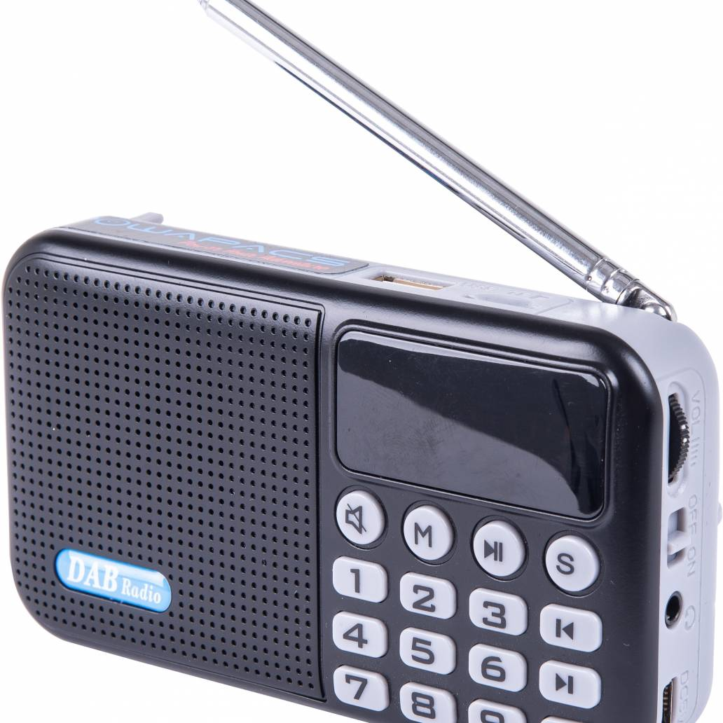 Powapacs D.A.B Digital Radio