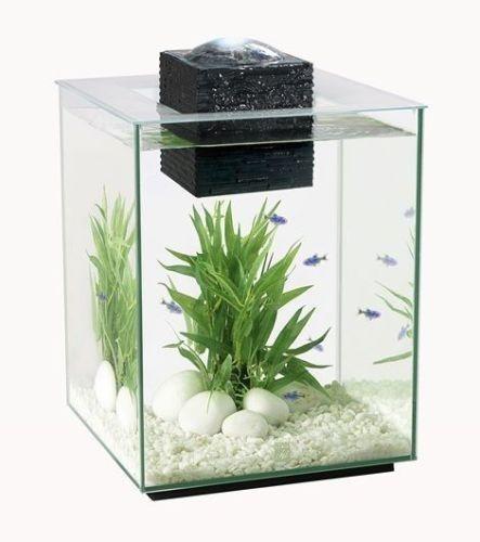 Fluval Chi Aquarium Set 19L
