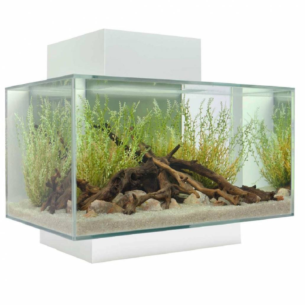 Fluval Edge 23L Gloss White