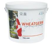 Evolution Aqua Food Wheatgerm 6000G (5-6mm/Medium)