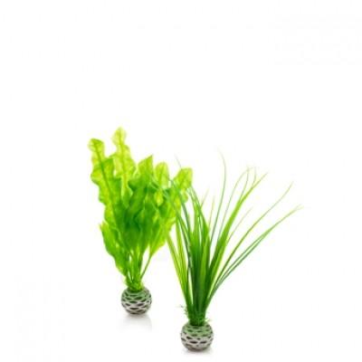 Oase BiOrb Easy Plant Set - Small - Green (46055)