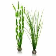 Oase BiOrb Easy Plant Set - Large - Green (46057)