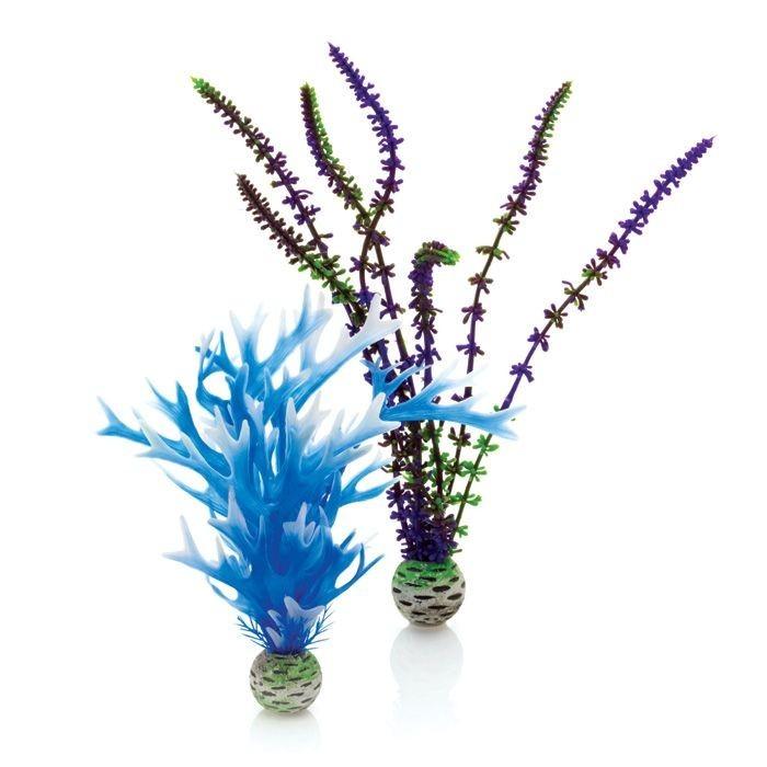 Oase BiOrb Plant Set - Medium - Blue & Purple (46059)