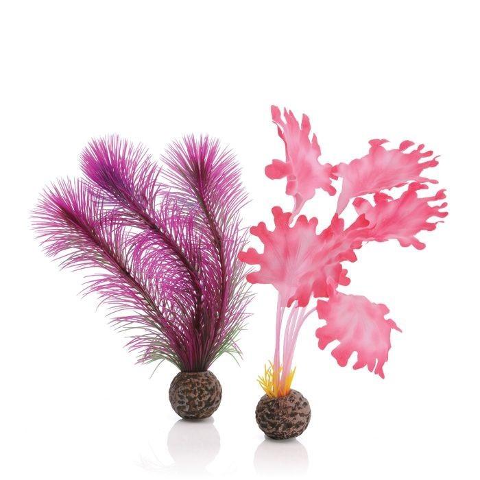 Oase BiOrb Kelp Set - Small - Pink (46081)