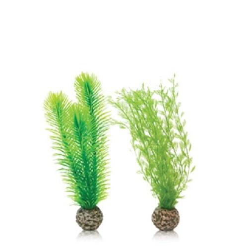 Oase BiOrb Feather Fern Set - Small - Green (46083)
